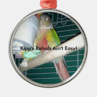 Kippsのリハビリテーションのためのおもしろいプロダクト メタルオーナメント