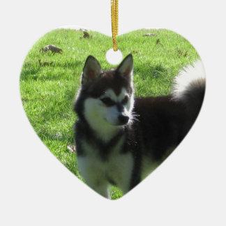 KleeアラスカのKai犬 セラミックオーナメント
