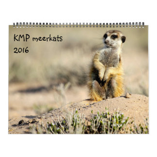 KMP Meerkats - 2016カレンダー カレンダー