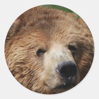 Kodiakのヒグマのステッカー ラウンドシール