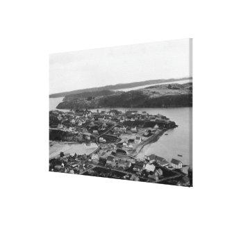 Kodiak、アラスカの写真の空中写真 キャンバスプリント