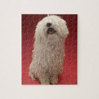 Komondorかわいい犬 ジグソーパズル