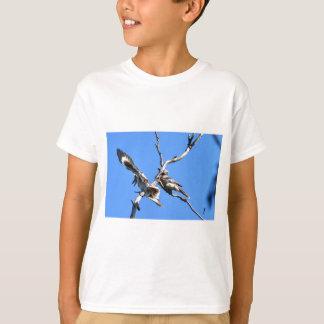 KOOKABURRAの田園クイーンズランドオーストラリア Tシャツ
