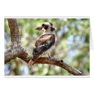 KOOKABURRA田園クイーンズランドオーストラリア カード