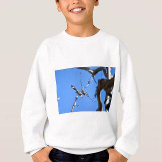 KOOKABURRA田園クイーンズランドオーストラリア スウェットシャツ