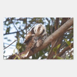 KOOKABURRA田園クイーンズランドオーストラリア 長方形シール