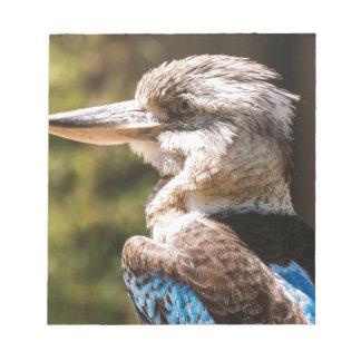 Kookaburra ノートパッド