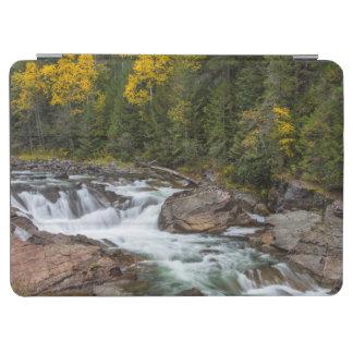 Kootenaiの国民の秋のYaakの滝 iPad Air カバー