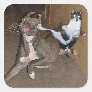 Kung Fuの子猫 スクエアシール