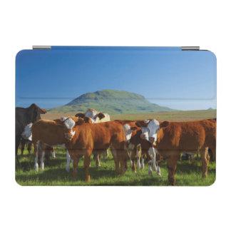 Kwazulu出生Kambergの谷の牛 iPad Miniカバー