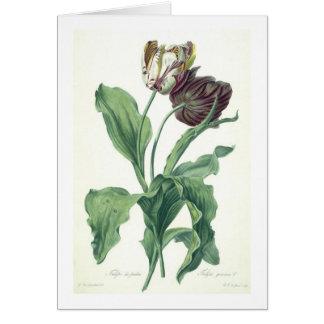 L刻まれる「オペラBotanica」からの庭のチューリップ、 カード