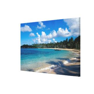 LaのSamana半島、ドミニカ共和国、 キャンバスプリント
