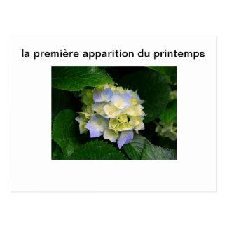 la premieree fleur du printemps ポストカード