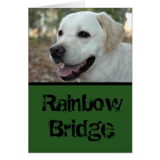 Labrador Retriever sympathy card3 カード