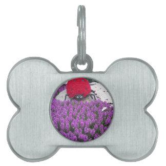 LadyLUCKのてんとう虫によっては紫色の蝶庭が開花します ペットネームタグ