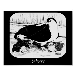 Lahores 1980年 ポスター