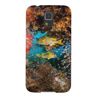 Laja Ampat水中6 Galaxy S5 ケース