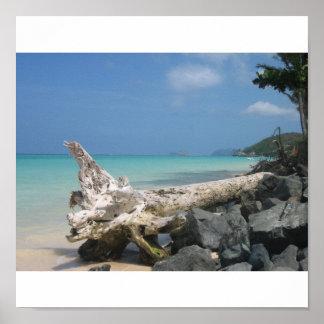 Lanikaiのビーチ ポスター
