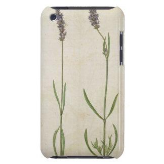 Lavandulaのofficinalis (古い英国ラベンダー)、c.15 Case-Mate iPod touch ケース