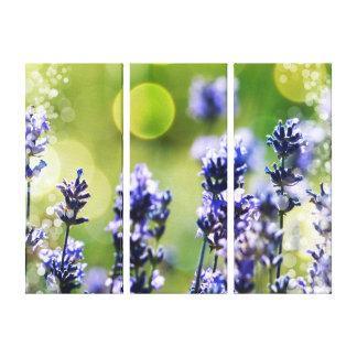 Lavendarの野生花の抽象芸術 キャンバスプリント