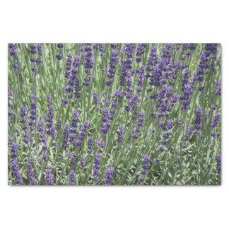 Lavender Flowers Floral 薄葉紙