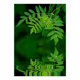 Leinwanddruck Leinwandのキャンバスのプリント ポスター