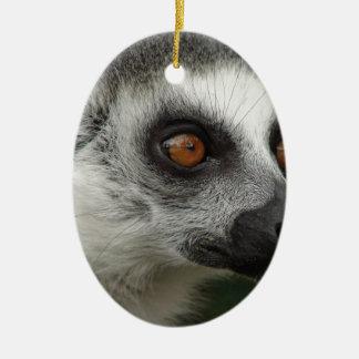 Lemurの写真 セラミックオーナメント