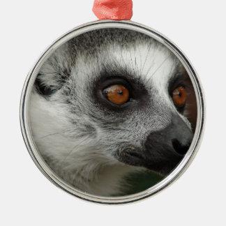 Lemurの写真 メタルオーナメント