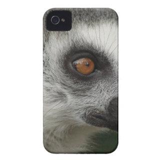 Lemurの写真 Case-Mate iPhone 4 ケース