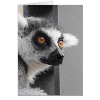 Lemurの挨拶状 カード