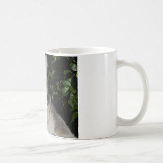 Lemurの提起 コーヒーマグカップ