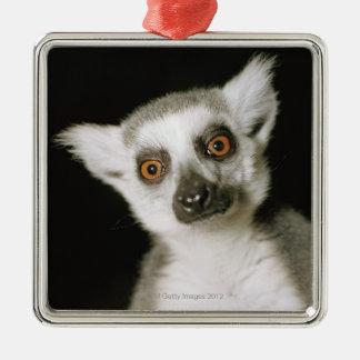 lemur. メタルオーナメント