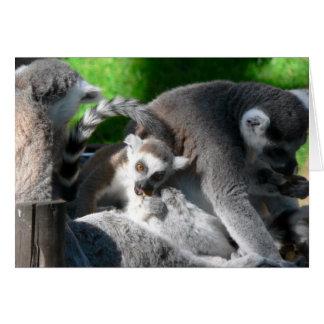 Lemursの食べること カード