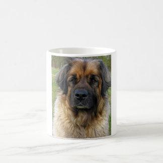 Leonberger犬のマグ、美しい写真、ギフト コーヒーマグカップ