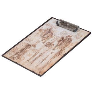 Leondardo Da Vinci著人間の解剖学の骨組 クリップボード