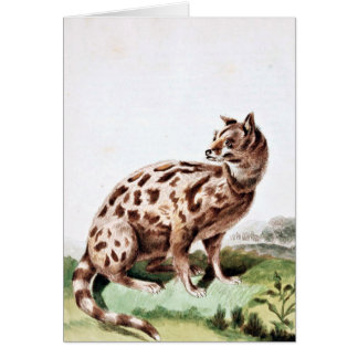Leverian Possane猫の芸術 カード