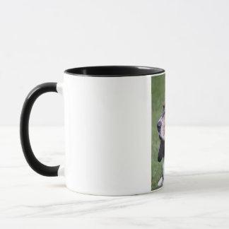 Libby マグカップ