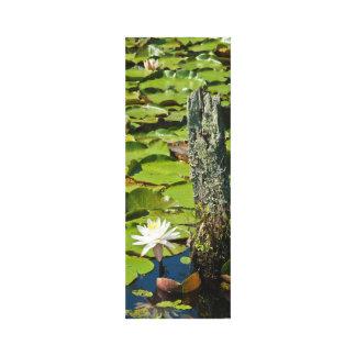 Lillyの池 キャンバスプリント