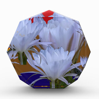 Lillyの野生の白い花:  自然のすばらしい世界 表彰盾