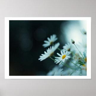 lim_esによる花 ポスター