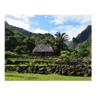 Limahuliの庭、カウアイ島のタロイモの庭 ポストカード