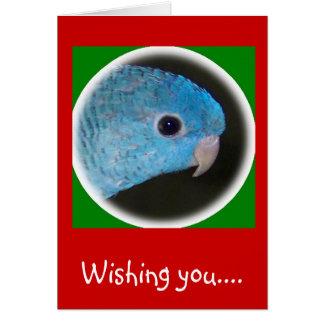 linnieのインコのクリスマスカードの幸せな休日 カード