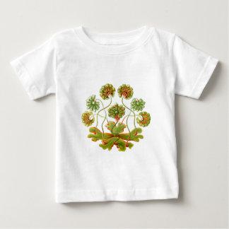 Liverwort ベビーTシャツ