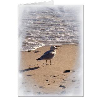 Lkesはビーチで長く…歩きます カード