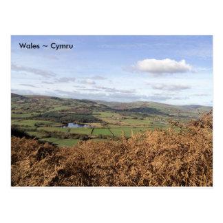 Llyngwyn湖、Rhayaderの近くで、ウェールズ ポストカード