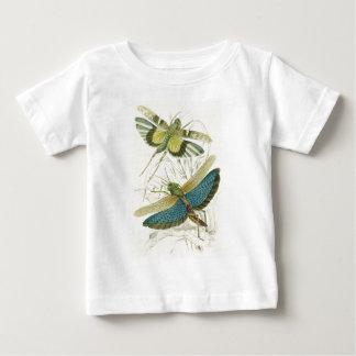 Locusta Cristata (より低い)、Locustaのflava (上部) ベビーTシャツ