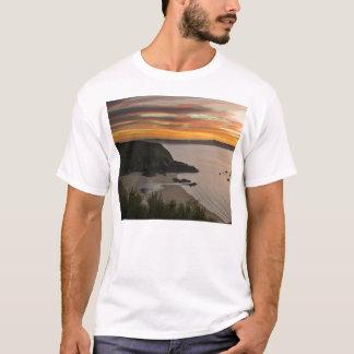 Lucienヒューズの写真撮影 Tシャツ