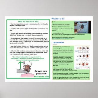 Lymeの認識度のためのカチカチポスターを取除く方法 ポスター