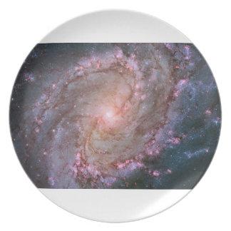 M83渦状銀河のプレート プレート