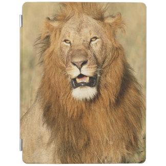 Maasaiマラの国立保護区、オスのライオン iPadスマートカバー
